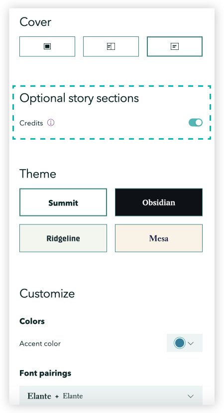 The toggle for adding a story credits section is found in the design panel above the theme selections