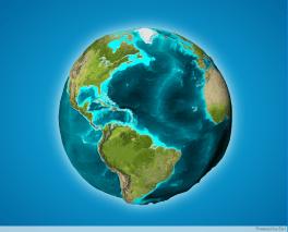 step 3 - globe