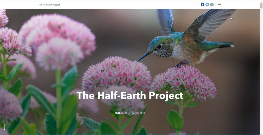 Half Earth Project story map