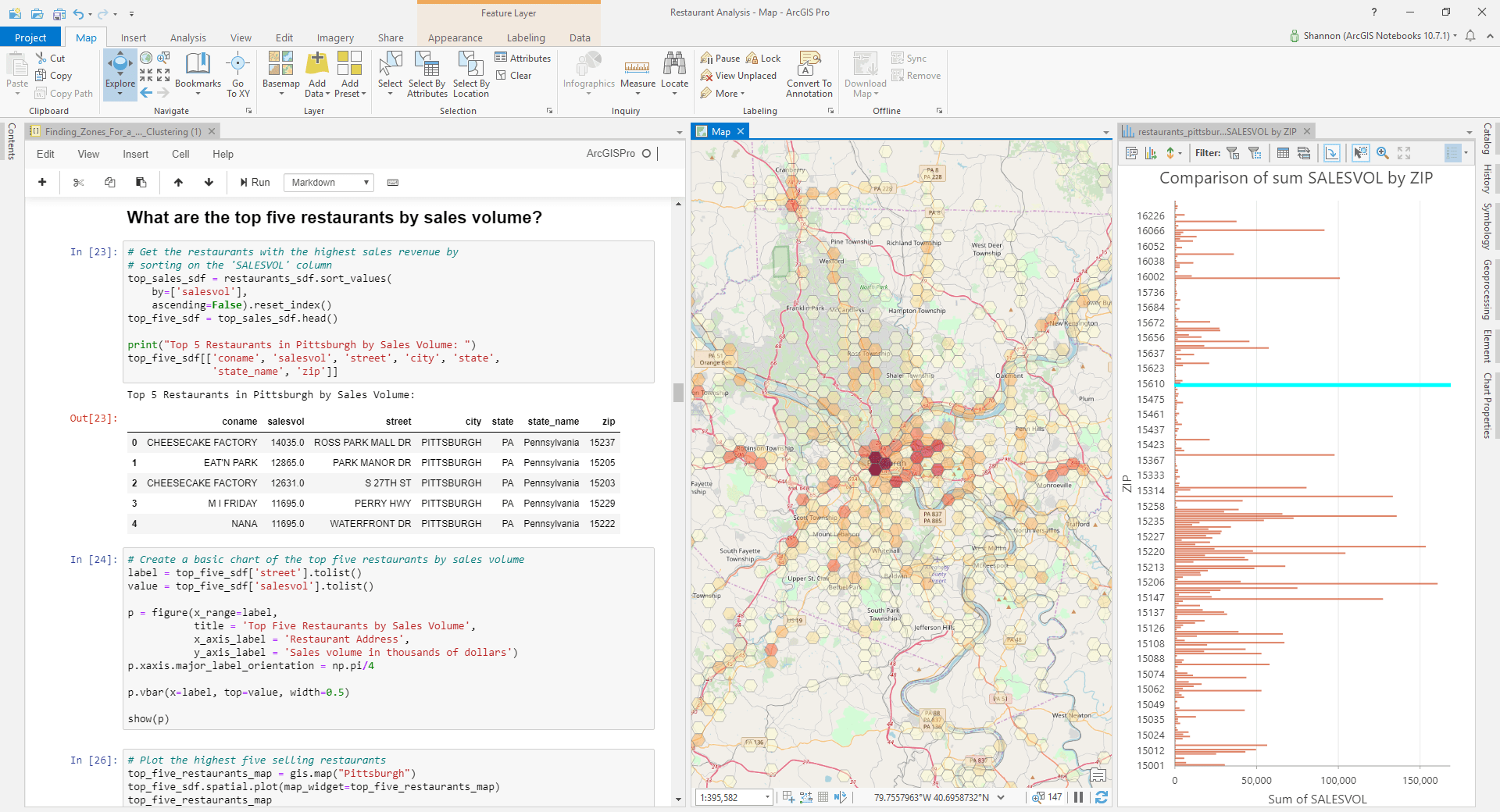 Image of ArcGIS Notebooks in Pro