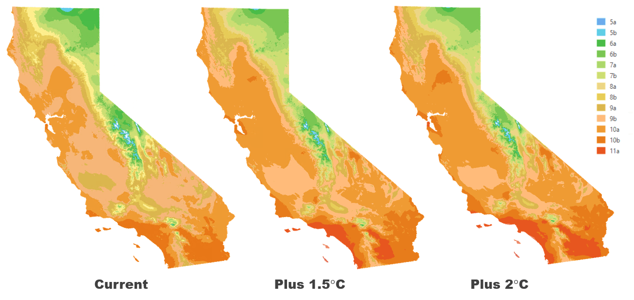 Current hardiness zones and results of analysis