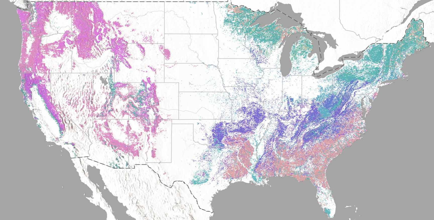 USA forest type map