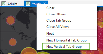 New vertical tab group selected on the context menu of the Youth map tab