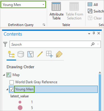 The top layer in the Contents pane renamed to Young Men with the Yougn Men definition query active