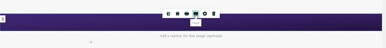 Select the size of an image, with cursor pointing at the Large option.