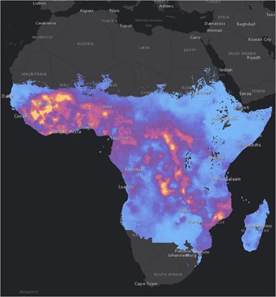 2015 malaria rates