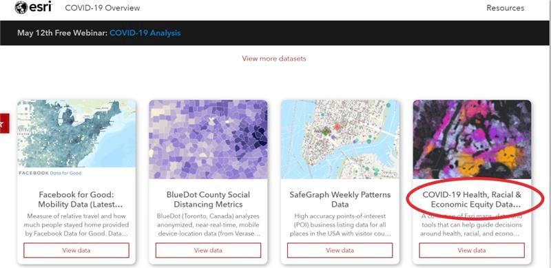 Screenshot of COVID-19 Health, Racial, and Economic Equity Data Viewer on the Esri COVID-19 GIS Hub