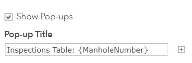 This image shows configuring the related records pop-up title to show the manhole number.