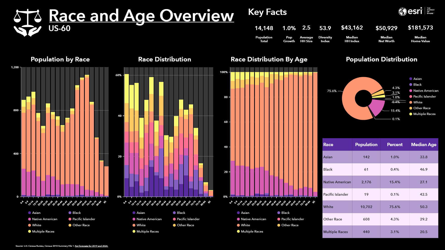 Race and Age Overview - Infographic Template