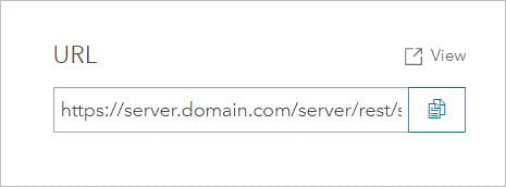 Service URL on item page