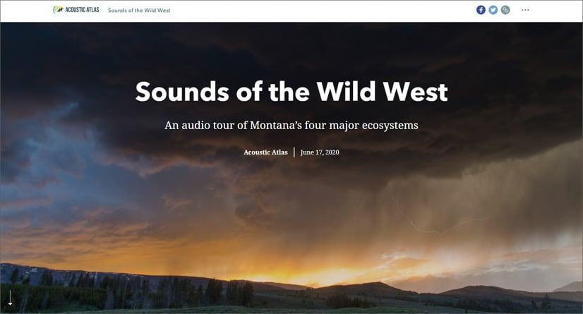 Audio en historias