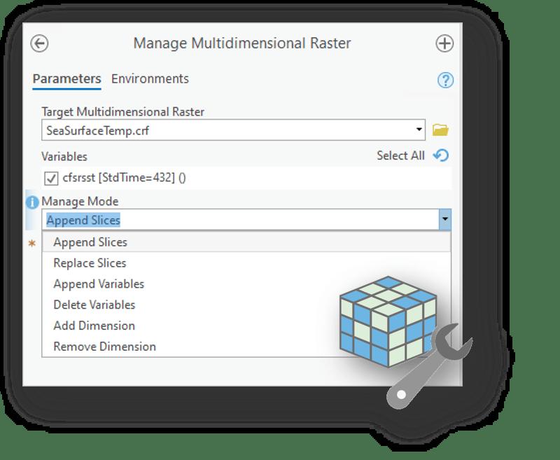 Manage Multidimensional Raster tool
