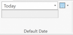 VRP Ribbon Default Date section