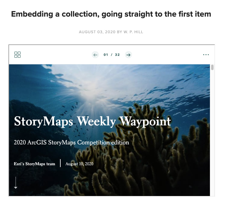 Screenshot of a collection embedded in Squarespace that has its contents page skipped and is starting on the first item in the collection instead