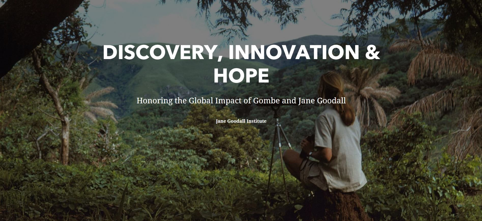Cover of the Discovery, Innovation, and Hope story.