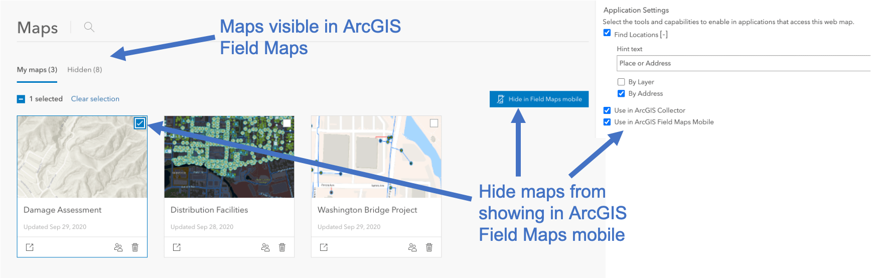 Show or hide maps in ArcGIS Field Maps