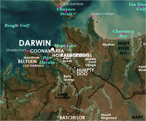 Map with many overlapping labels