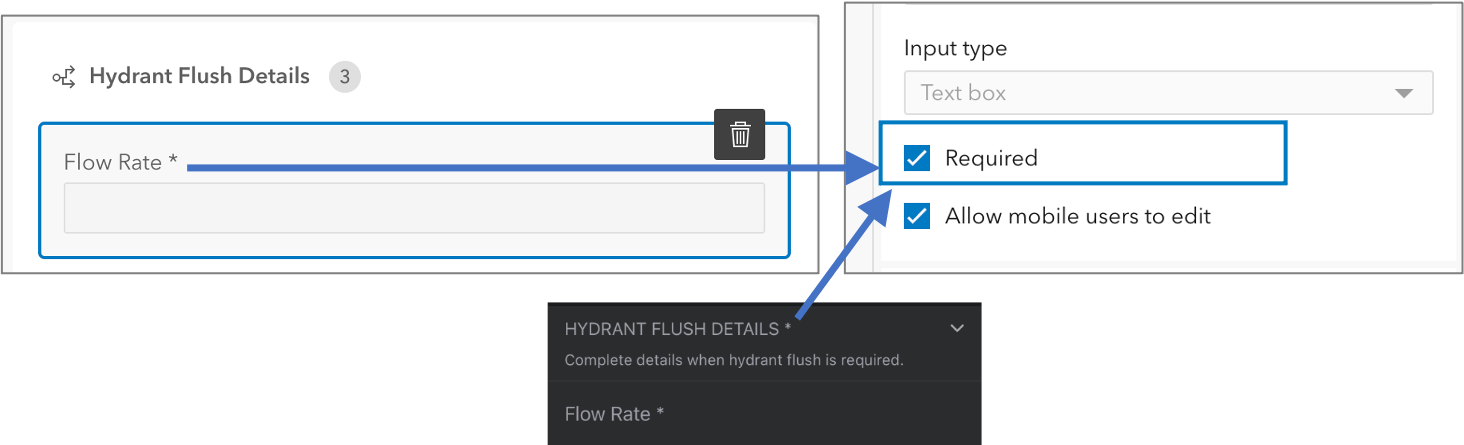 Required fields are marked with a * next to the display name.