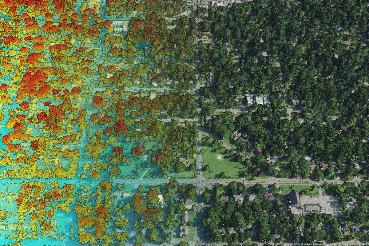 Lidar symbolized by height (left) and by RGB value from leaf-on NAIP imagery (right).