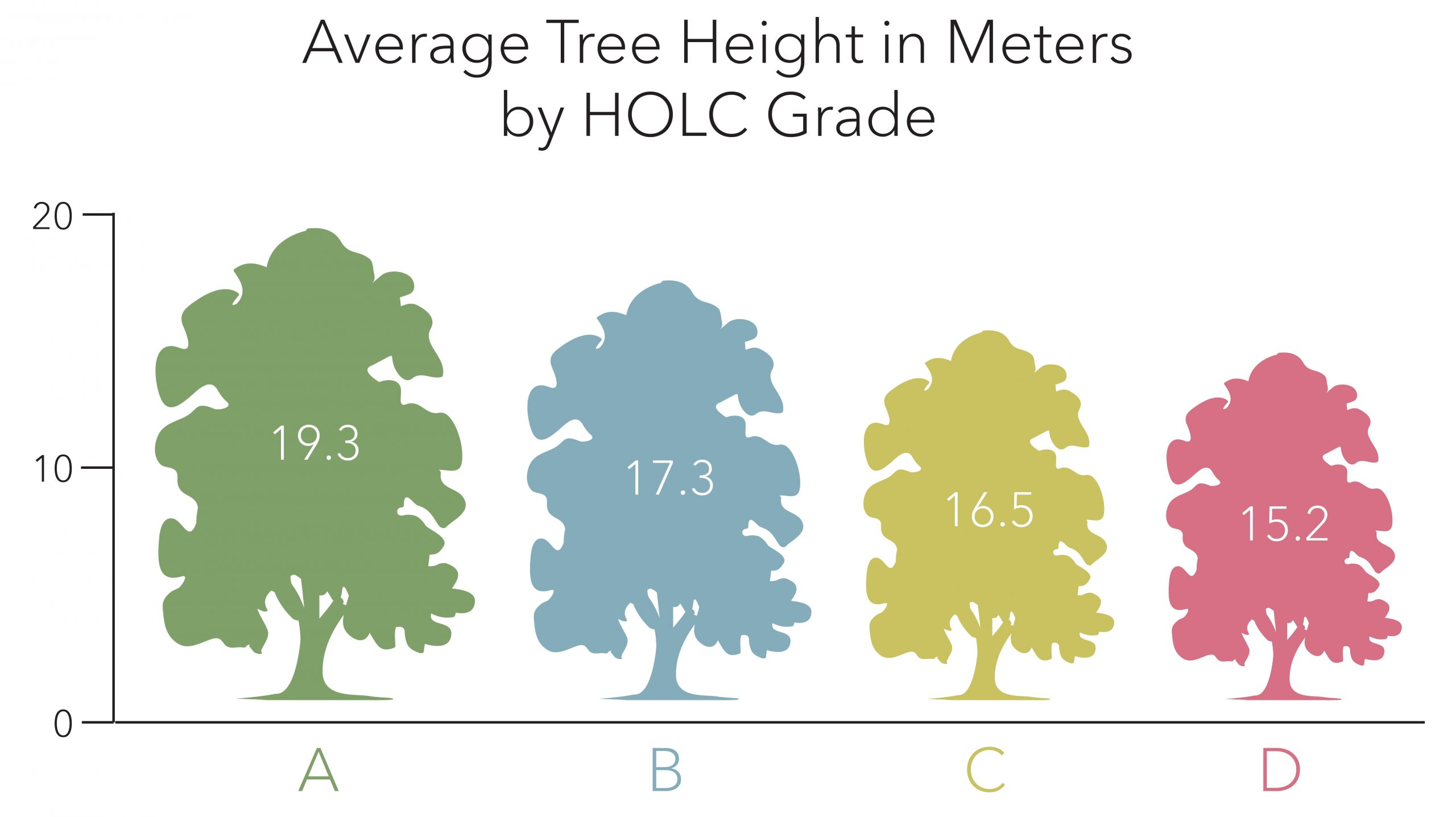 Graphic showing the average tree height by HOLC grades.
