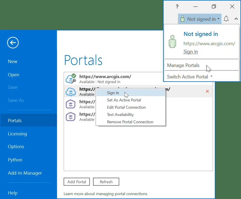 Portal connection options