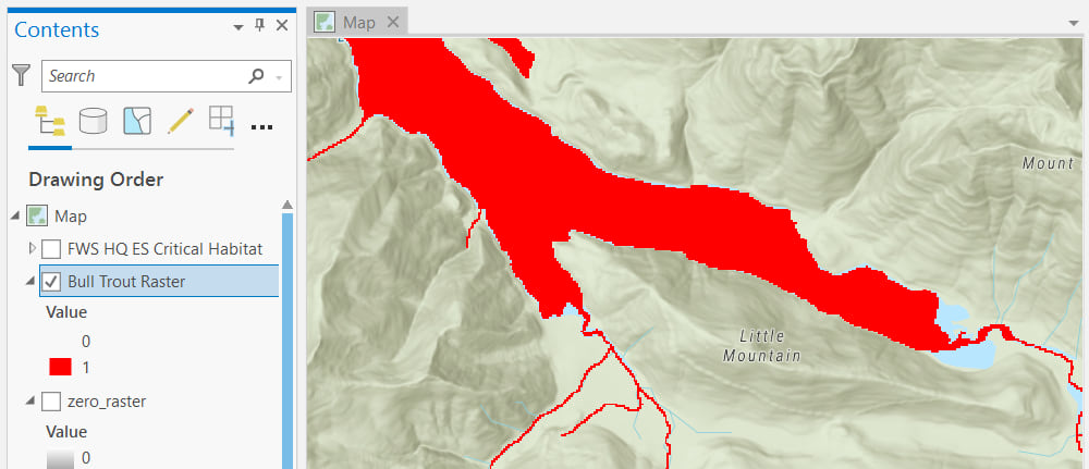 bull trout raster in ArcGIS Pro