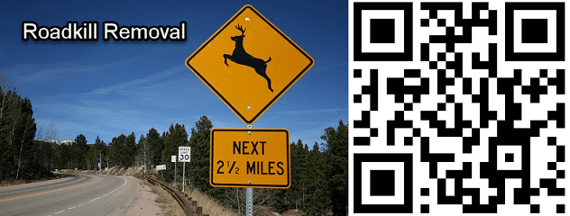 Roadkill Removal template