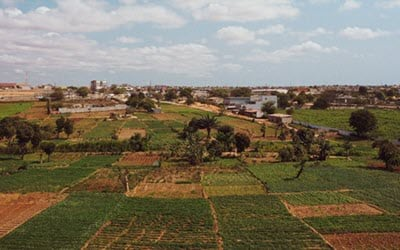 Ethiopian farm land