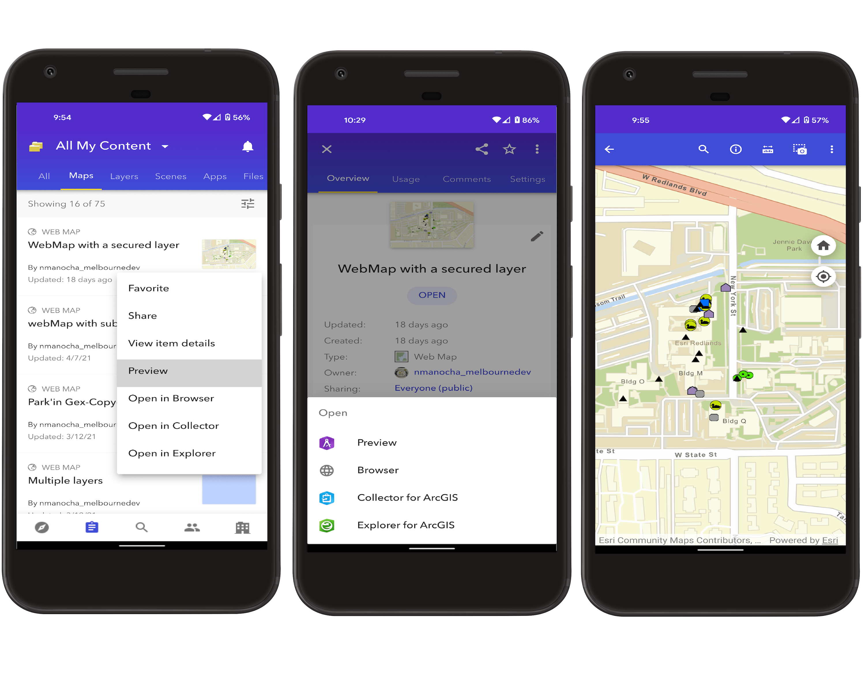 Preview web map within the app