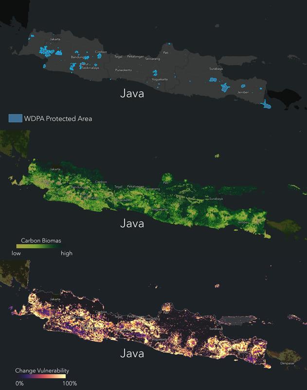 Peta konservasi, biomassa, dan kerentanan Jawa