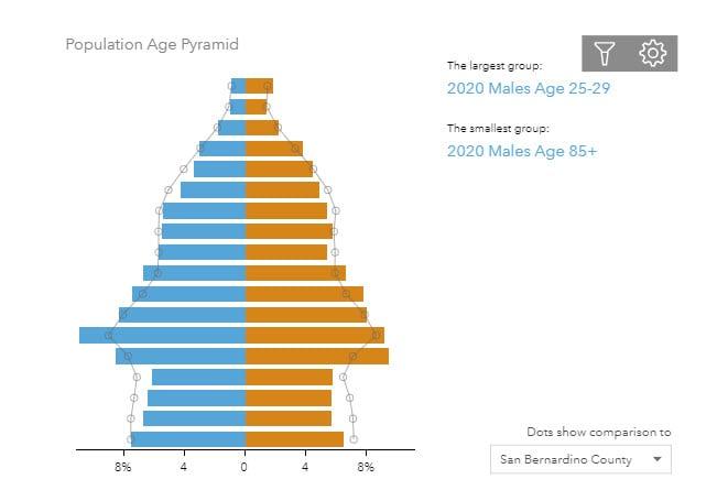 Infographics-population age pyramid chart