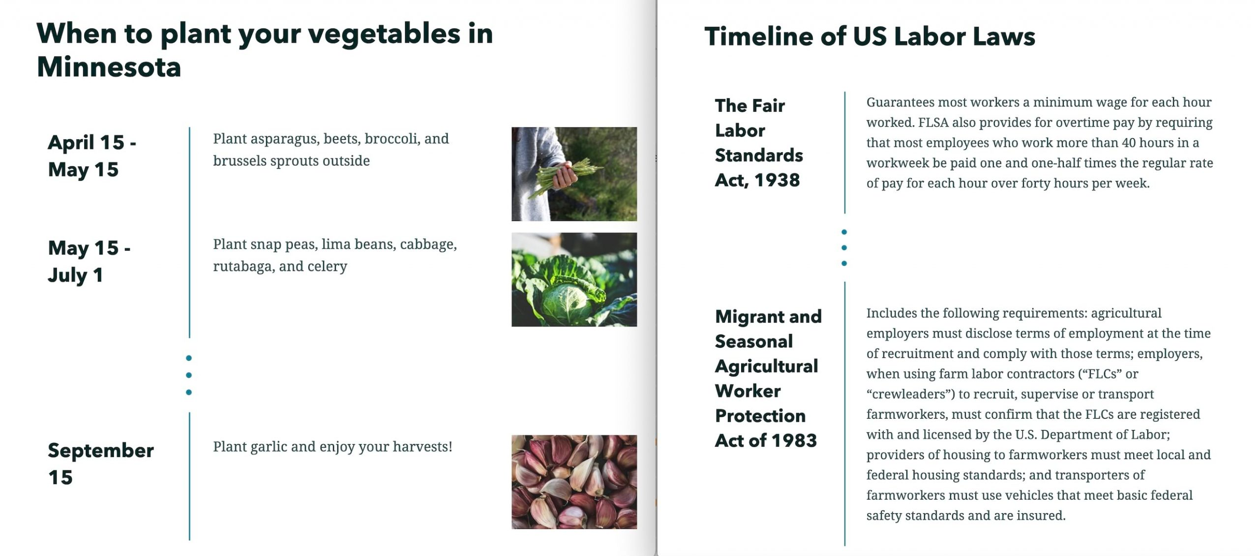 Two examples of timelines using condensed layout