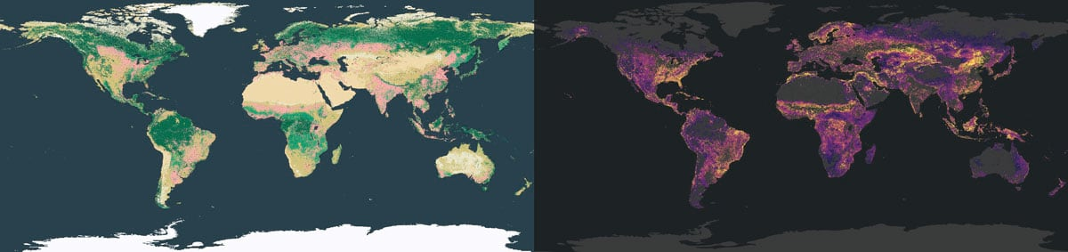land cover and vulnerability
