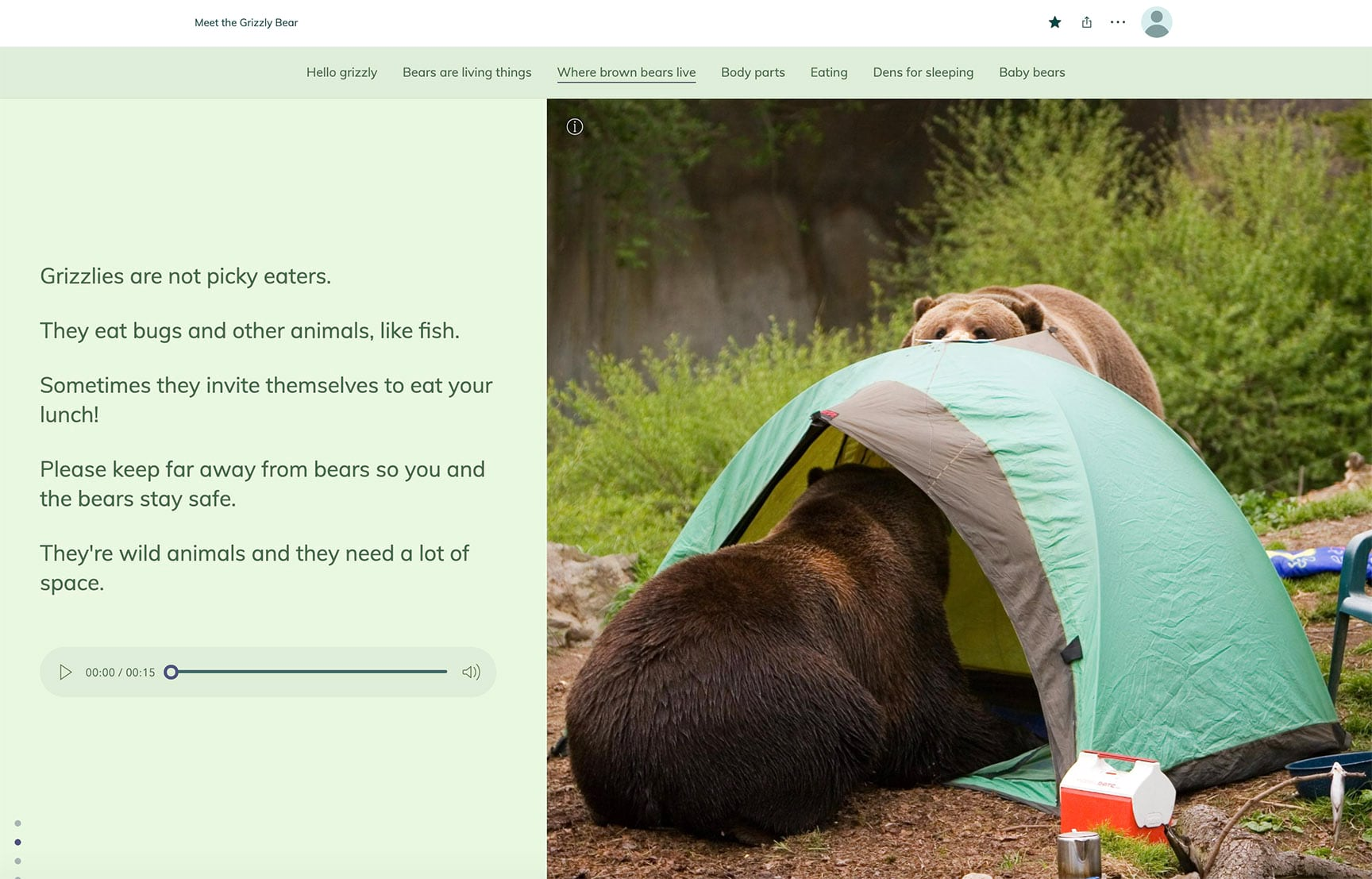 Two brown bears raid a campsite crawl into a tent and help themselves to a meal