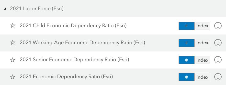 economic dependency ratio variables