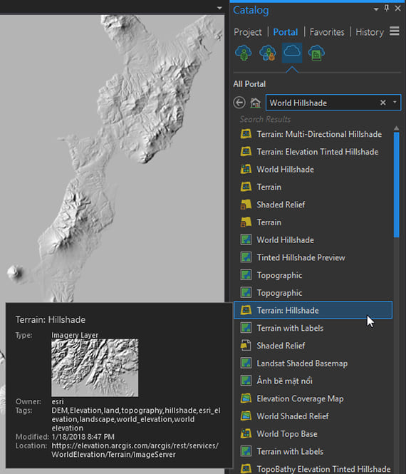 Terrain:Hillshade Imagery layer from ArcGIS Online