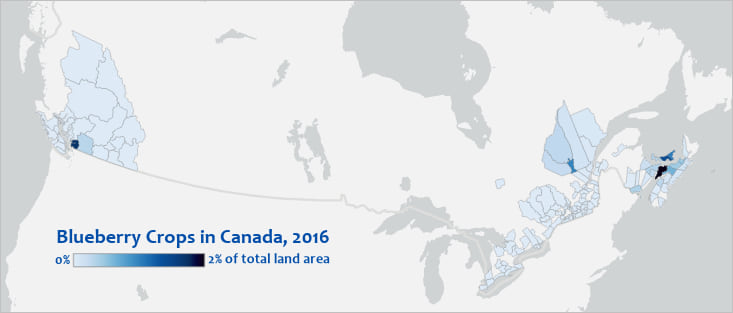 Map of blueberry crops in Canada