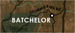 Batchelor label placed to the lower left of its point