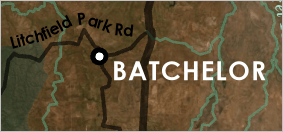 Batchelor label placed to the lower right of its point