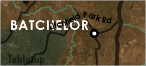 Batchelor label placed to the upper left of its point