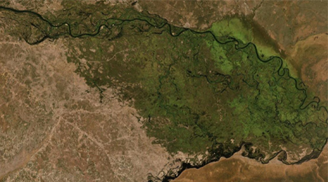 Satellite image of South Africa's conservation area