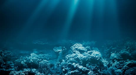 A coral reef with light shining through the water