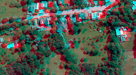 3D aerial image of a rural neighborhood with green land and trees