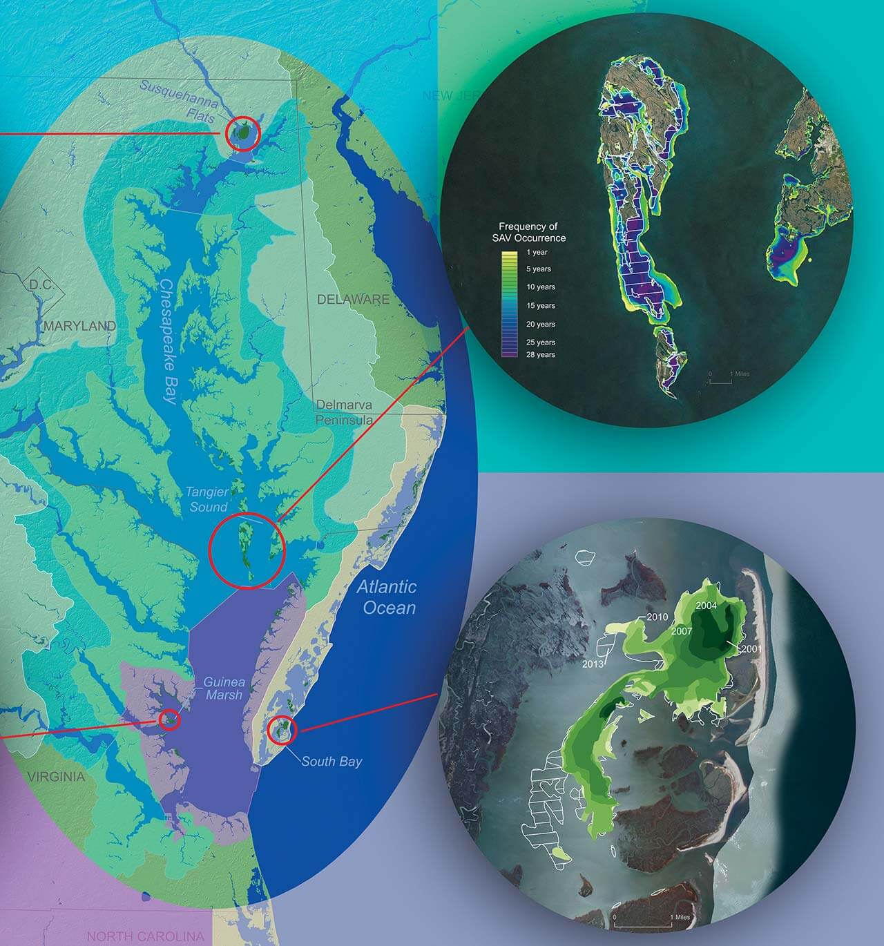 Arcgis pro professional 2d 3d gis mapping software advanced analytics gumiabroncs Choice Image