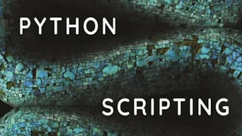 Blue and black graphic behind text that reads, 'Python Scripting'