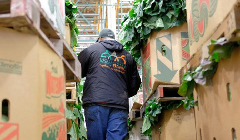A food bank volunteer walks through isles of lettuce in the warehouse