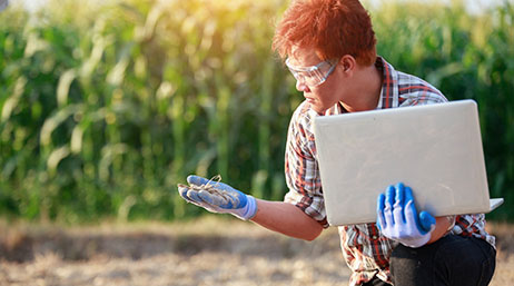 Scientist in a field holding a laptop and studying a plant