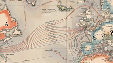Submarine Cables | Maps We Love - Esri