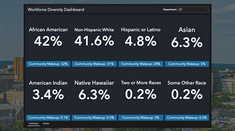 Workforce diversity dashboard showing current statistics on one company's diversity metrics