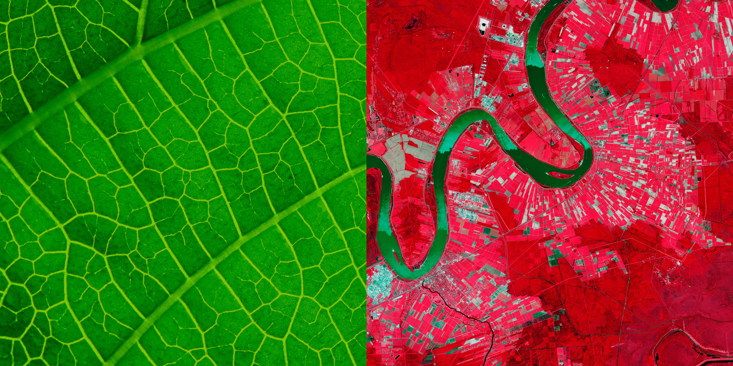 An infrared rendering of a map shows land use patterns and differentiates between areas of vegetation and urbanization
